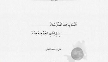 شعر علي بن محمد التهامي ألمت بنا بعد الهدو