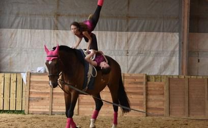 photo cheval quantuveu voltige