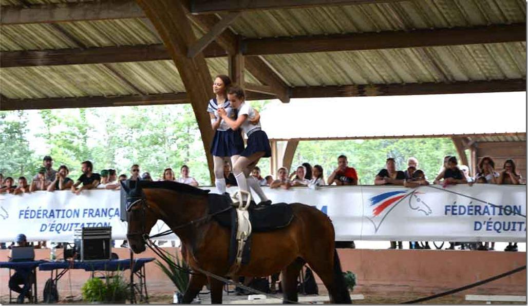 bonnet-pour-chevaux
