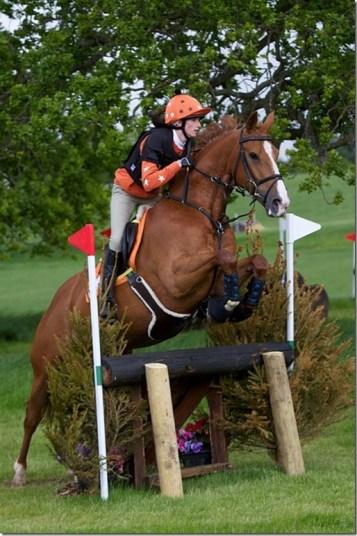 seance cheval cross A dada mon dadou