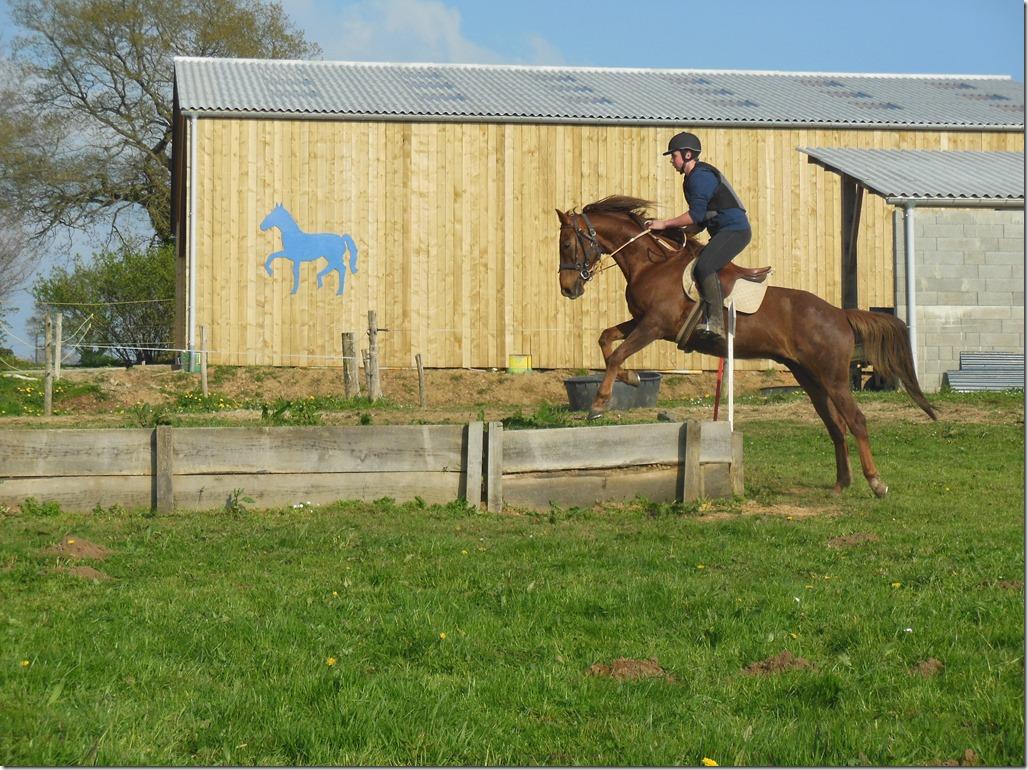exercice à cheval terrain varié