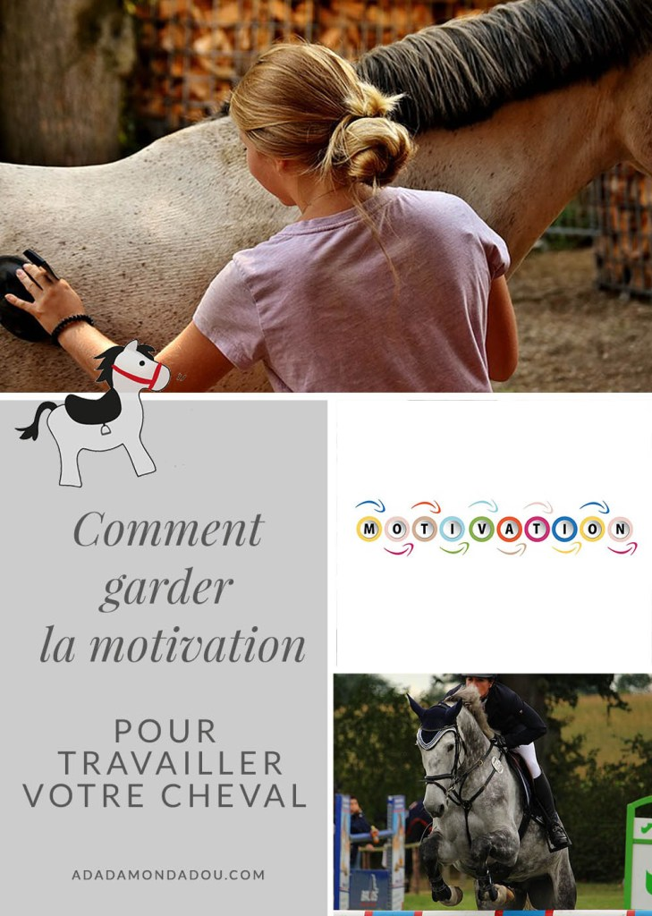 motivation cavalier travail cheval équitation
