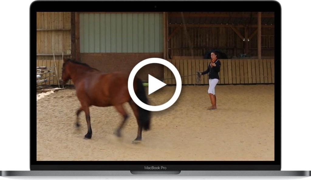 video plateforme d'exercices dadou s'active