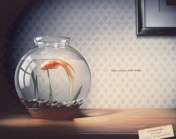 https://i2.wp.com/adage.com/images/random/1007/hisp07_magsilver_fish_big.jpg
