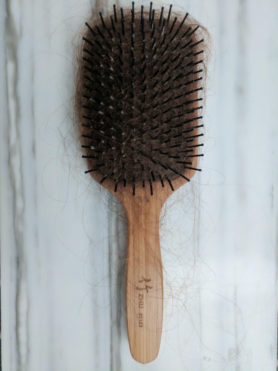 brush before.2