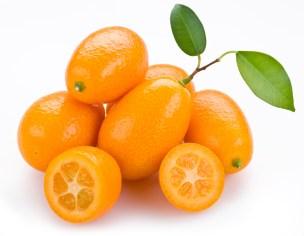 kumquat-2-ss
