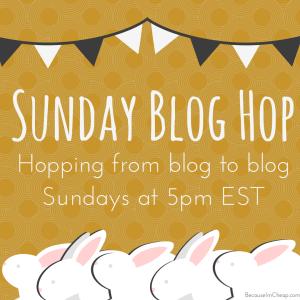 Sunday Blog Hop