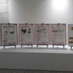 都庁での展示の様子