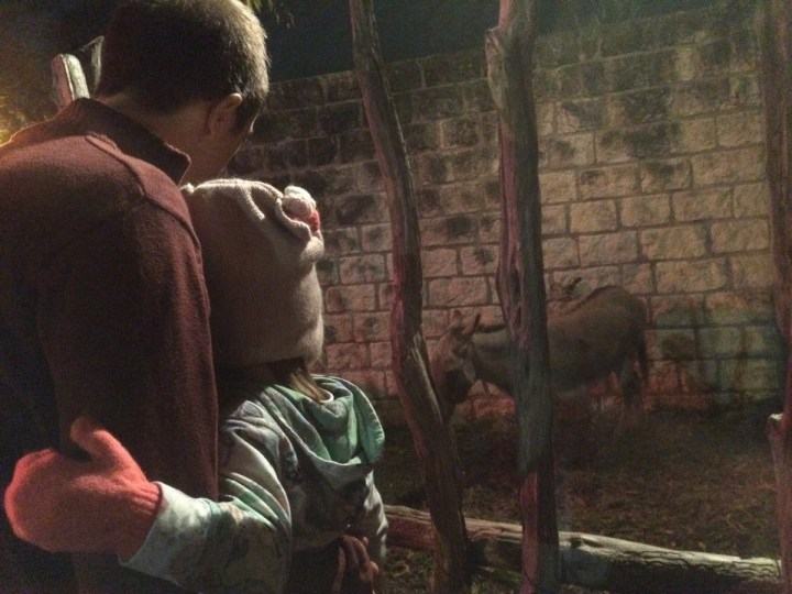 Daddy and Eliza looking at a donkey in Bethlehem