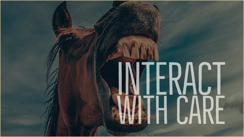 interact-with-care-2