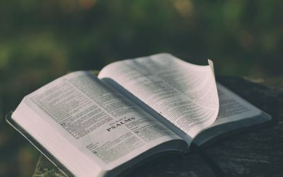 The Top 3 Considerations I Make as I Prepare  to Preach through a Book of the Bible