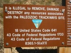 2011October00NMTrip_paleozoicTrackways13
