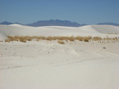 2011October00NMTrip_whiteSands05