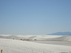 2011October00NMTrip_whiteSands06