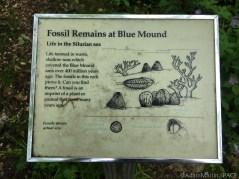 Flint Rock Nature Trail - Sign describing fossils
