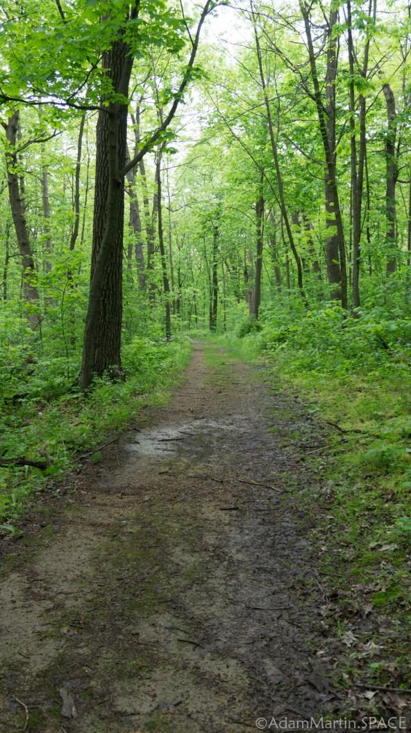 Flint Rock Nature Trail