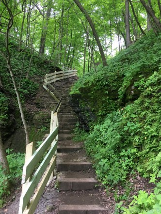 Wyalusing State Park - Treasure Cave trail looking up