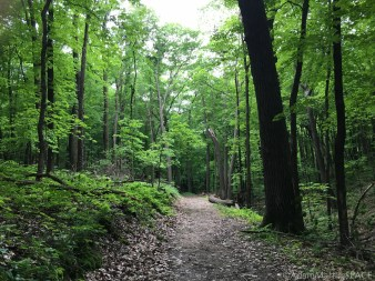 Wyalusing State Park - Sugar Maple Nature Trail