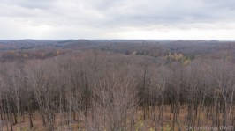Timms Hill - View from top of tower