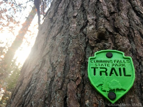 Cummins Falls State Park - Trail marker on a tree