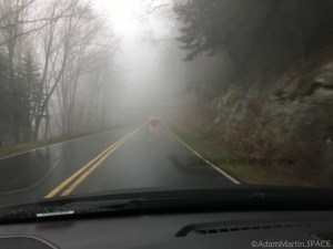 Clingmans Dome - Driving to the top