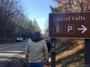 Laurel Falls - Sign at the parking area