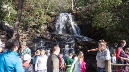 Laurel Falls - Lots of people at the falls