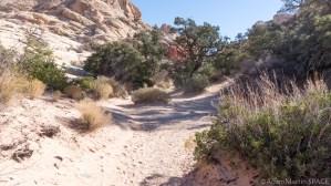 Red Rock Canyon - Calico Tanks