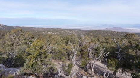 Mount Charleston - Desert View Overlook