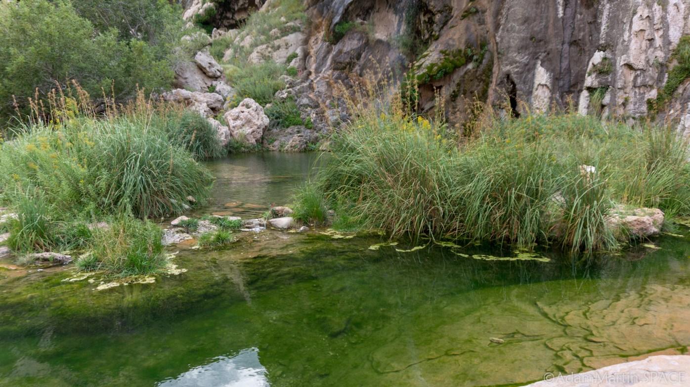 Sitting Bull Falls - Green Pool Below Main Falls