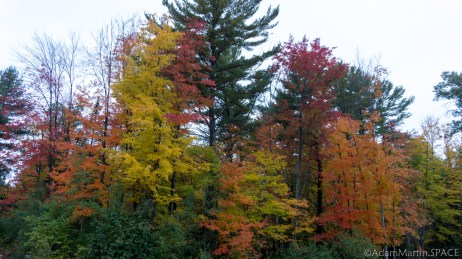 Governor Thompson State Park - Fall Colors