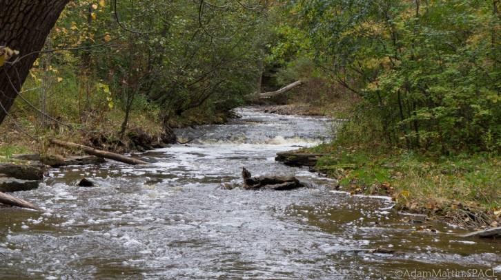 Baird Creek Falls - Smaller Falls Upstream