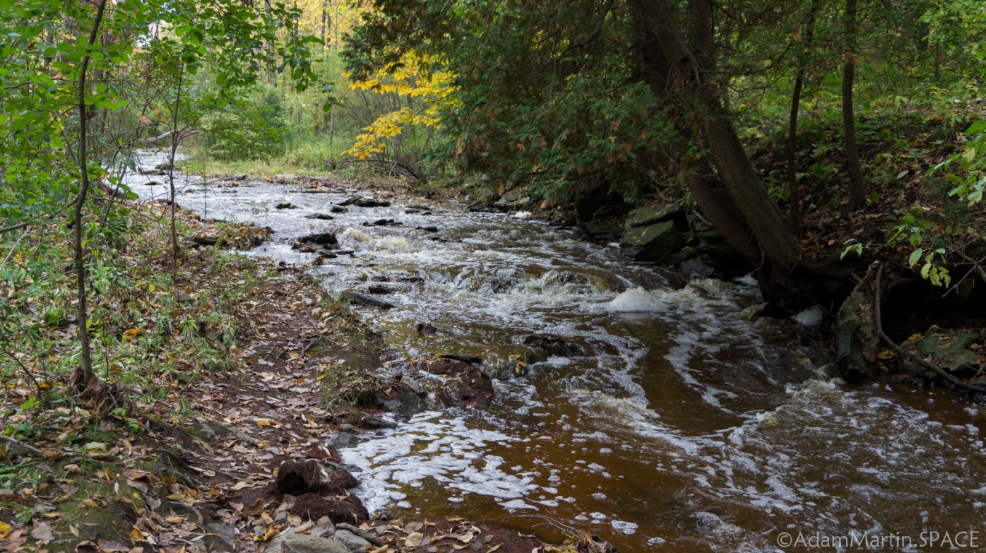 Baird Creek Falls - Creek Narrows Upstream