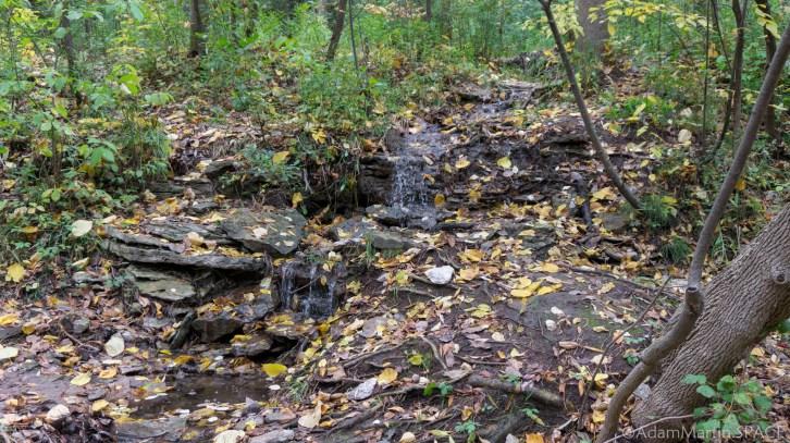 Baird Creek Falls - Tiny Waterfall