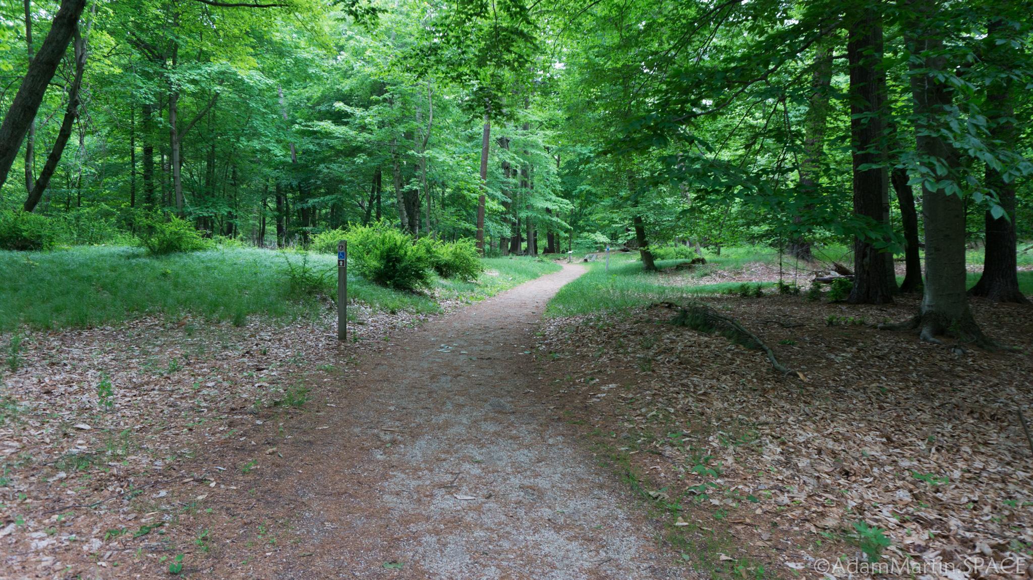 Woodland Dunes Trail At Kohler Andrae >> Kohler Andrae State Park Adammartin Space