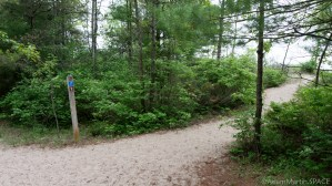 Kohler-Andrae State Park - Access to Lake Michigan on Woodland Dunes Nature Trail