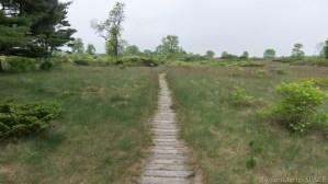 Kohler-Andrae State Park - Cordwalk path on Creeping Juniper Nature Trail