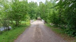 Cedar Falls - Road into Cedar Falls Campground