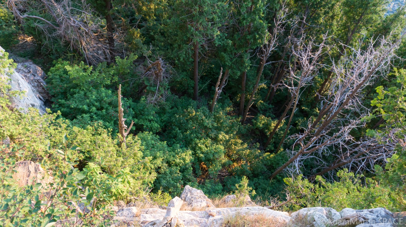 Ellison Bluff County Park - Looking down the cliffside