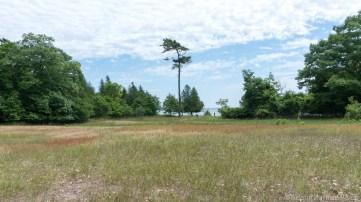 Rock Island State Park - Rutabaga Field