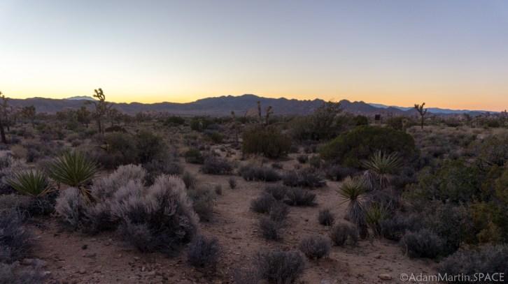Joshua Tree National Park - Desert Views at Sunset