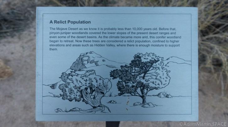 Joshua Tree - Hidden Valley Nature Plaque