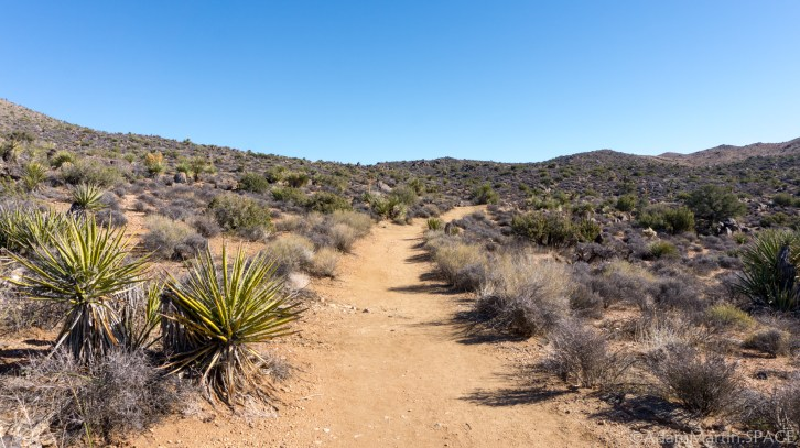 Joshua Tree - Trail to Lost Horse Mine