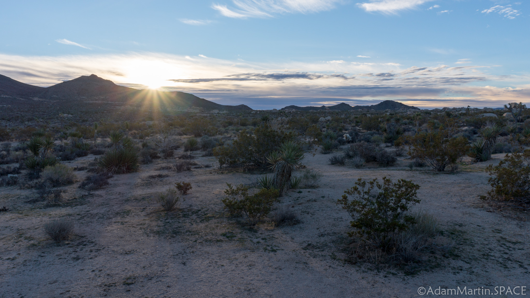 Joshua Tree - Sunrise from Belle Campground