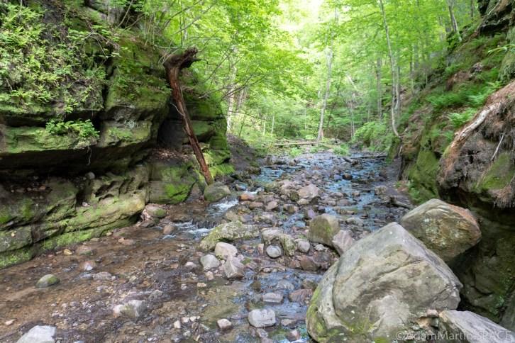 Parfreys Glen State Natural Area - Navigating Parfreys Glen Creek