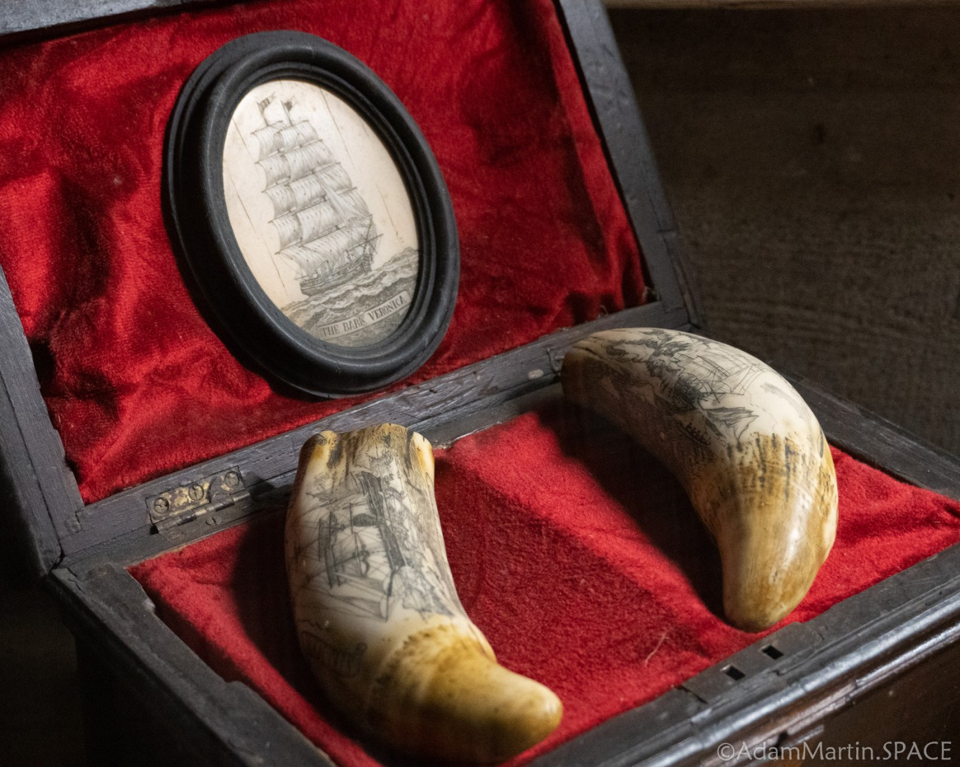 House On The Rock - Heritage Of The Sea Ivory Tusks