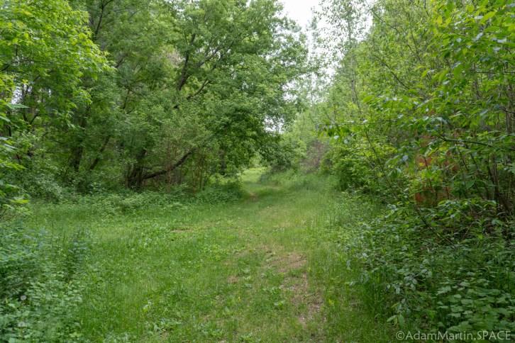 Cadiz Springs State Recreation Area - Zander Lake Nature Trail