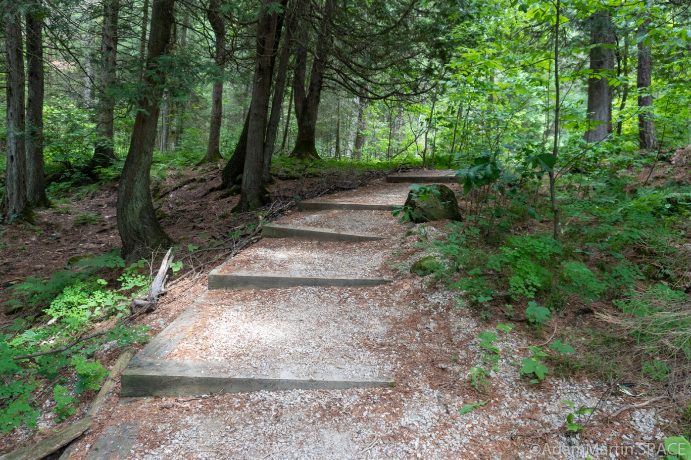 Quiver Falls Rapids - Short trail for river portages