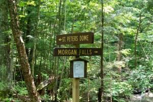 Morgan Falls - Trail fork sign post