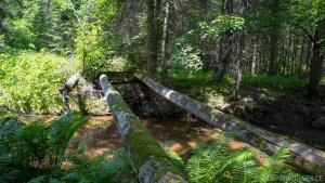 Pattison State Park - Old destroyed bridge across Copper Creek